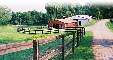 Turn-outand barn for horse boarding